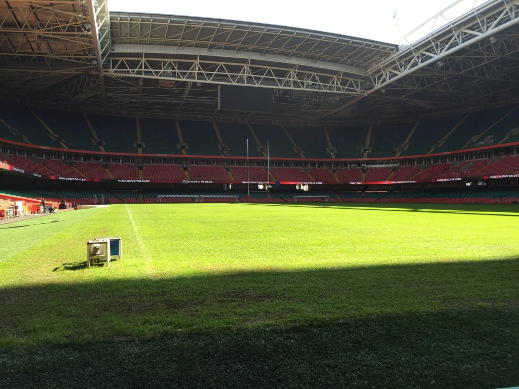 Looking out across the pitch.